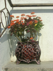 Jardiniera model Bologna