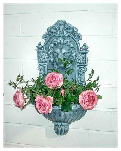 jardiniera flori